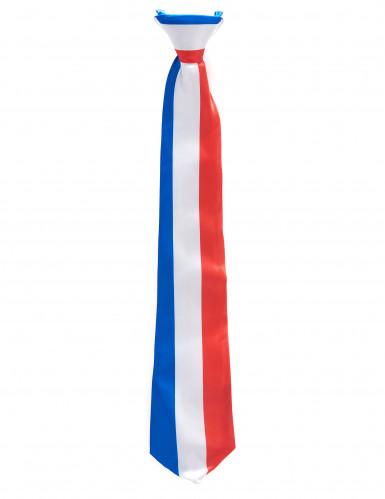 Frankreich Fan Krawatte