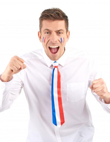 Frankreich Fan Krawatte-1