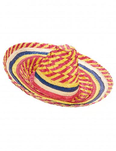 Mexikaner Sombrero für Erwachsene