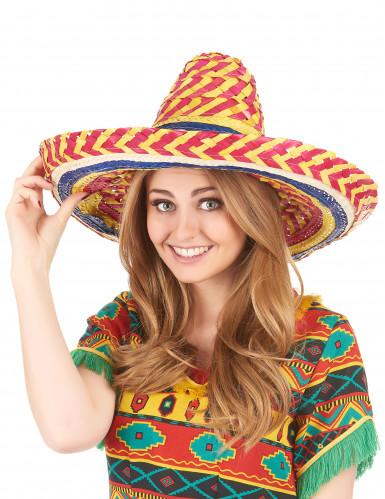 Mexikaner Sombrero für Erwachsene-1
