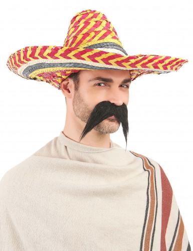 Mexikaner Sombrero für Erwachsene-2
