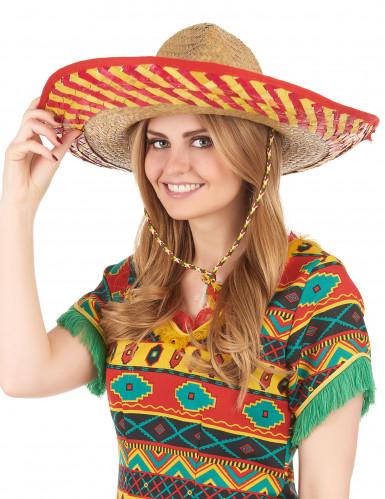 Mexikanischer Hut für Erwachsene-2