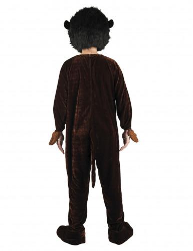 Maskottchen-Kostüm Affe-1