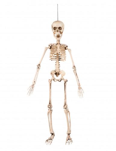 Halloween-Dekoration Biegsames Skelett, 50 cm-1