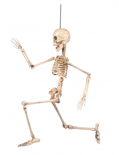 Halloween-Dekoration Biegsames Skelett, 50 cm-2