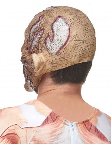 Latex-Maske eines verfaulten Gesichtes-1
