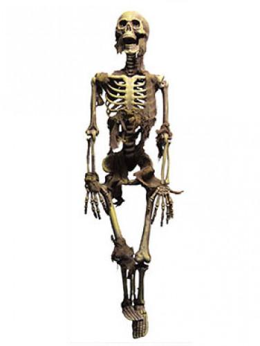 Halloween-Dekoration Skelett mit Lichteffekt zum Aufhängen, 100 cm