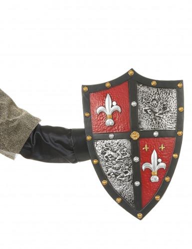 Ritterschild für Erwachsene-1