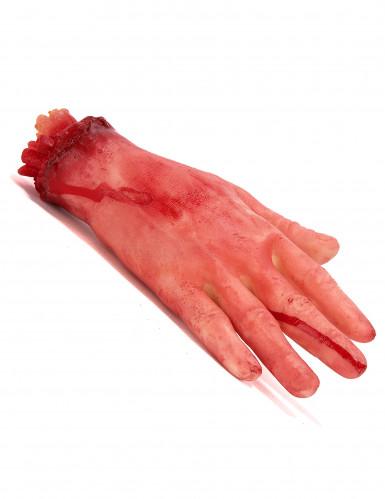 Blutige, abgerissene Hand