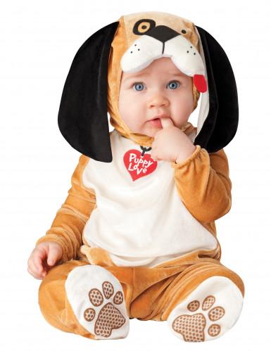 Baby-Hundekostüm braun-weiss-schwarz