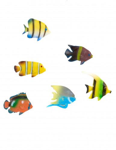 Tropische Fische zum Dekorieren - 6er-Set
