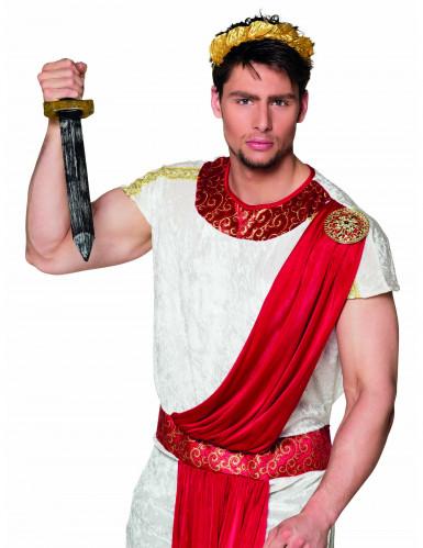 Römer Schwert Dolch für Erwachsene