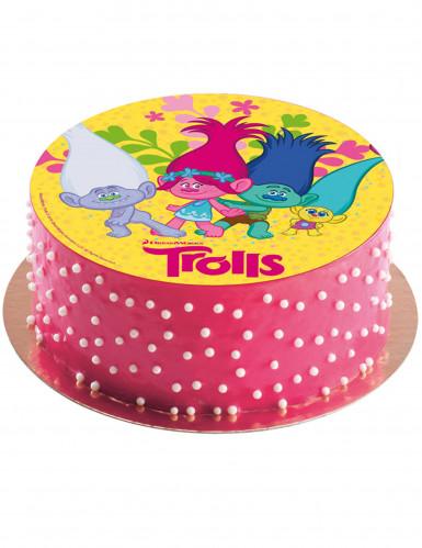 Zuckerscheibe für Kuchen Trolls™ 20 cm-1
