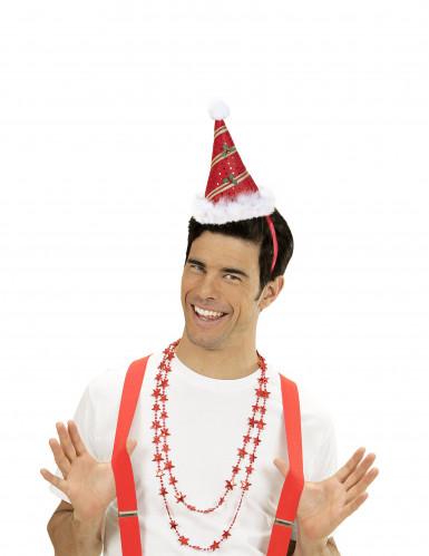 Spitzer Hut mit Stechpalme für Erwachsene-1