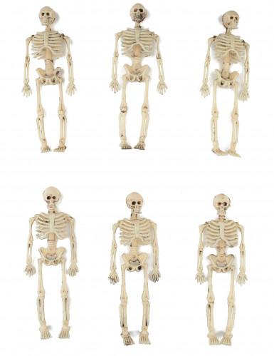 6 Deko Skelette 15 cm