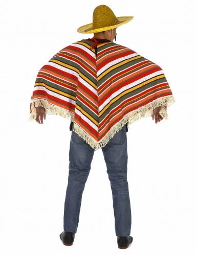 Mexikanischer Poncho für Erwachsene bunt-2