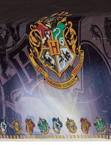 Tischdecke aus Kunststoff Harry Potter™ 137 x 213 cm-1