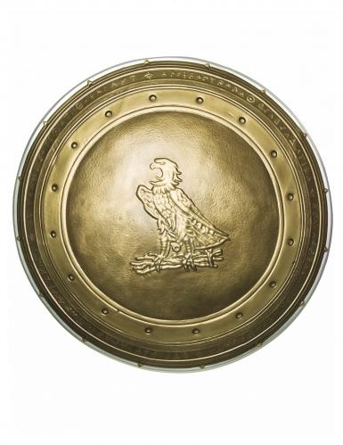 Wonder Woman™ Schild für Kinder gold 30 cm-1