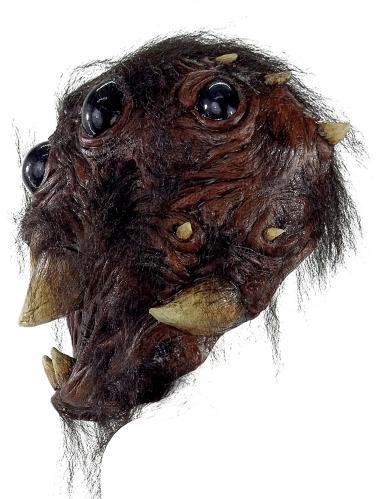 Gruselige Spinnenkopf-Maske für Erwachsene schwarz-braun-1