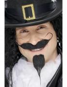 Bart und Schnurrbart eines Ritters für Erwachsene