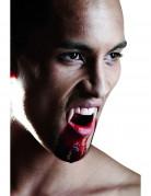 Luxuriöses Vampirgebiss für Erwachsene zu Halloween