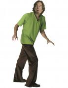 Shaggy™-Kostüm aus Scooby-Doo™ für Herren