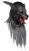 Wolf Maske für Erwachsene