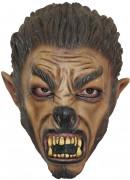 Wolf Maske Halloween für Kinder