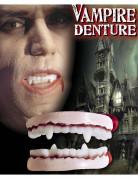 Halloween Vampir-Gebiss für Erwachsene