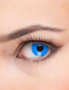 Kontaktlinsen blau 6 Monate