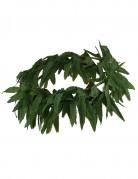 Cannabis-Blätter Haarband