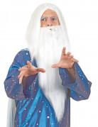Zauberer Perücke mit langem Bart