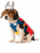Thor™-Kostüm für Hunde