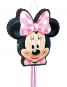 Piñata Minnie™