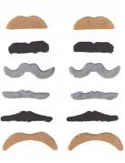 Bart-Set Moustaches 12 Stück für Erwachsene