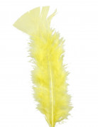 100 gelbe Federn