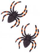 2 schwarz-orange Halloweenspinnen