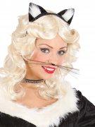 Schwarze Katze Schnurrbart Erwachsene