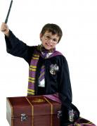 Kostüm Set Harry Potter™ für Kinder