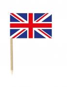 50 Flaggen Mini-Spicker Großbritannien